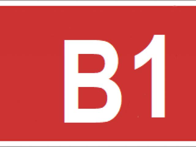 IMAGEB1